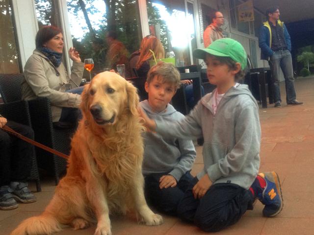 Hunde sind in unserem Club als Zuschauer - nicht als Balljungen - herzlich willkommen